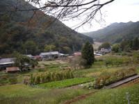 P50_20081019_115156