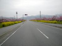 P50_20100411_055812