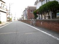 P50_20110206_110612