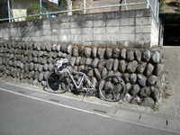 P50_20110319_100632