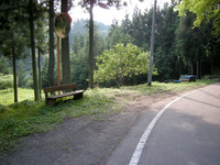 P50_20110715_154910