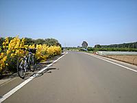 P50_20111010_130626