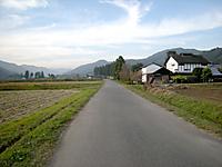 P50_20111103_145604
