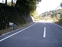 P50_20111104_093116