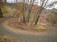 P50_20111104_132546