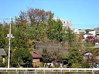 P50_20111204_121642