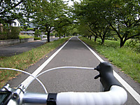 P50_20120811_090340
