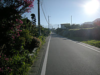 P50_20120826_064808