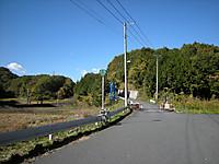 P50_20121110_112528