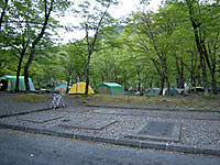 P50_20130503_175322