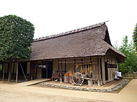 P50_20131019_125245