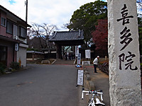 P50_20131208_104746