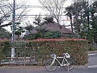 P50_20141220_091904